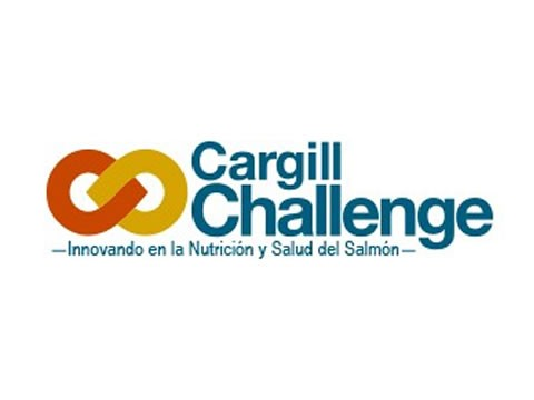 Cargill-UC Challenge - Marketing Digital en Puerto Montt