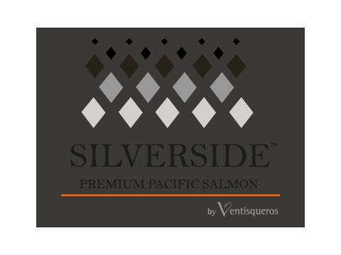 Silver Side - Marketing Digital en Puerto Montt